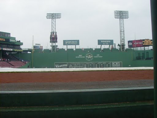 view from Red Sox dugout